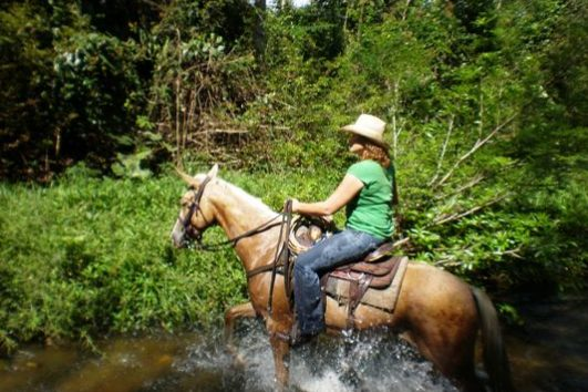 Tours from Belize City