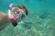 belize-reef-snorkel-tour-caye-caulker