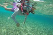 belize-reef-snorkel-tour-shark-ray-kids